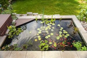 Bassin dans terrasse